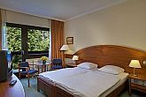 3-star hotel in Sopron - double room in Hotel Lover-  wellness weekend in Sopron